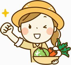 野菜の宅配